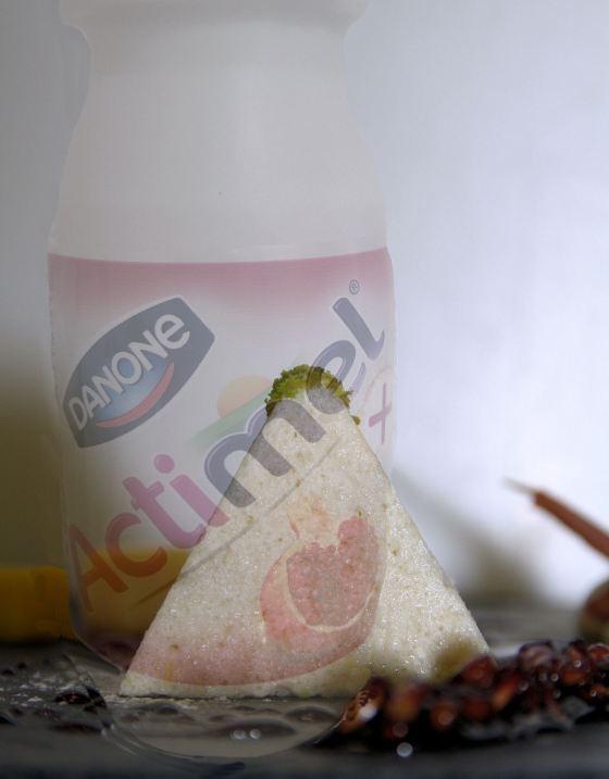 Actimel_Granatapfel_Terrine_mit_Flasche
